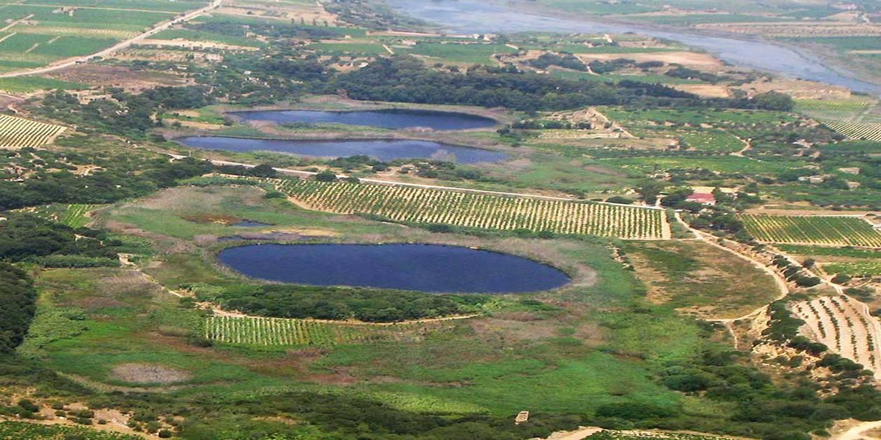L'immagine mostra una veduta dall'alto della Riserva Naturale di Preola e Gorghi Tondi