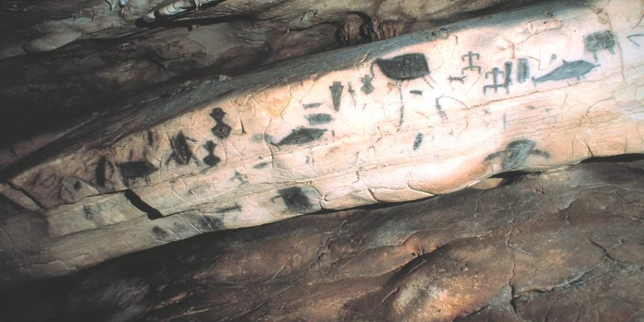 L'immagine mostra un particolare della Grotta del Genovese di Levanzo